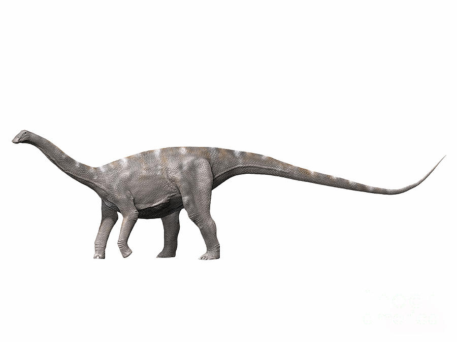 Nigersaurus Taqueti, Early Cretaceous Digital Art  - Nigersaurus Taqueti, Early Cretaceous Fine Art Print