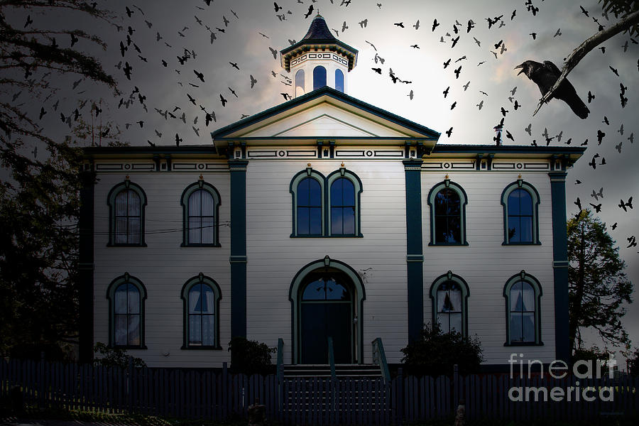Night Of The Birds . 7d12487 Photograph  - Night Of The Birds . 7d12487 Fine Art Print