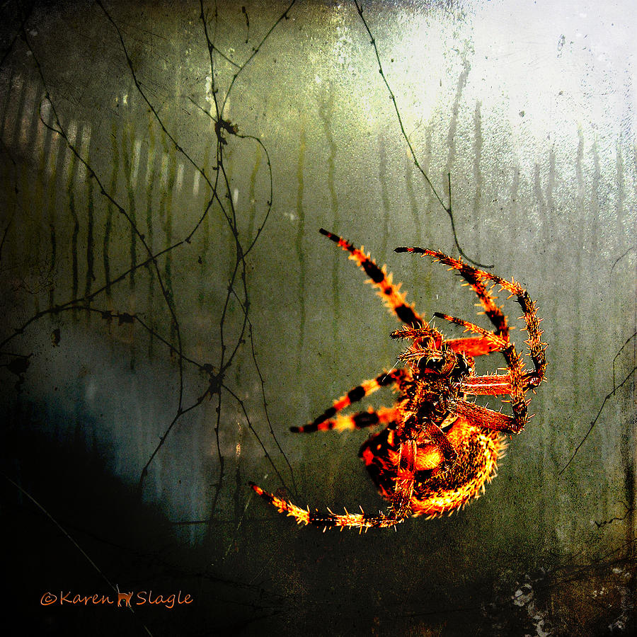 Nightmares Photograph  - Nightmares Fine Art Print