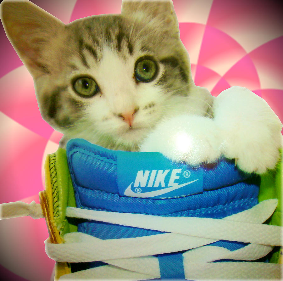 Nike Kitten Digital Art  - Nike Kitten Fine Art Print