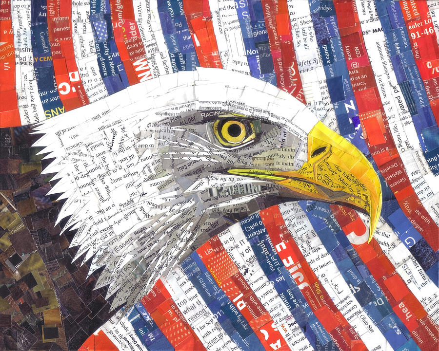 North American Bald Eagle Mixed Media