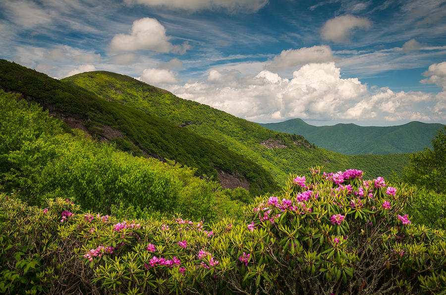 North Carolina Blue Ridge Parkway Craggy Gardens Photograph By Dave Allen