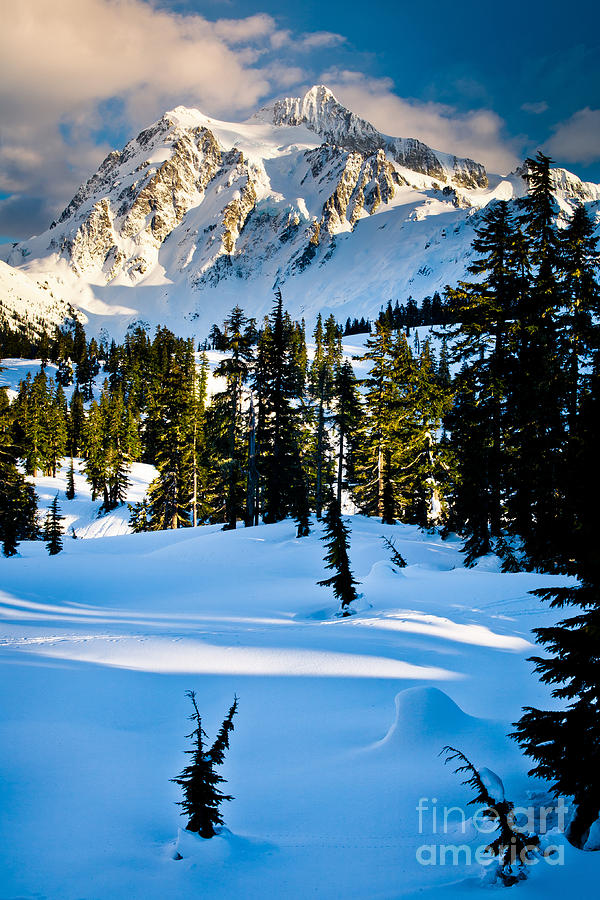 North Cascades Winter Photograph  - North Cascades Winter Fine Art Print
