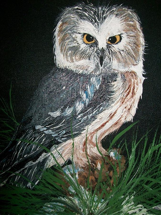 Feather Painting - Northern Saw-whet Owl by Sharon Duguay