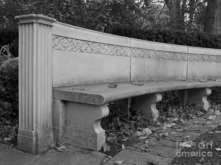 Northwestern University Weinberg Garden Bench Photograph