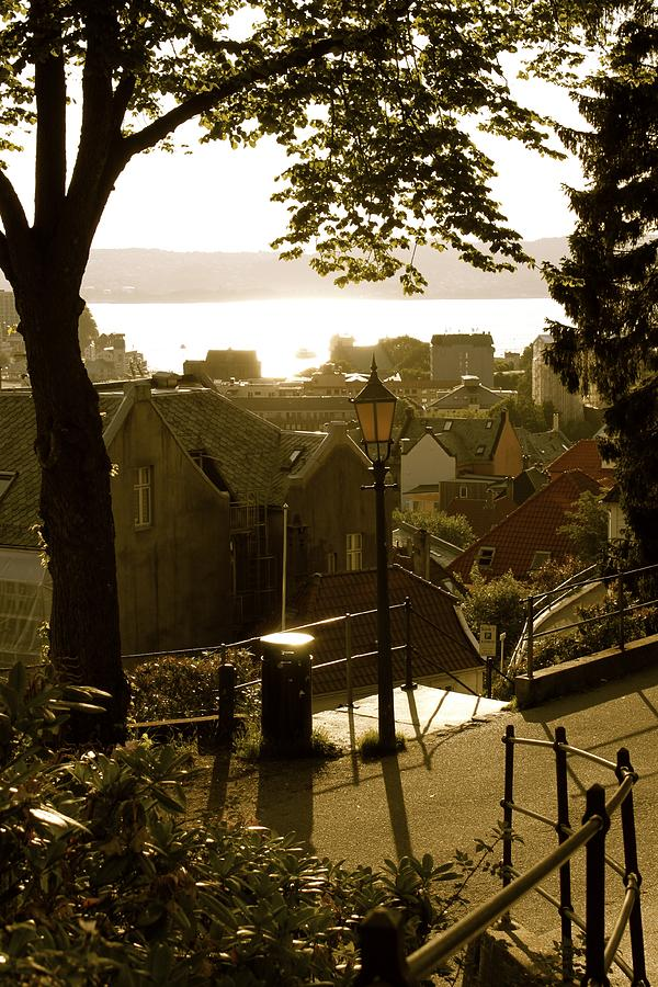 Norway - Bergen - Summertime Photograph  - Norway - Bergen - Summertime Fine Art Print