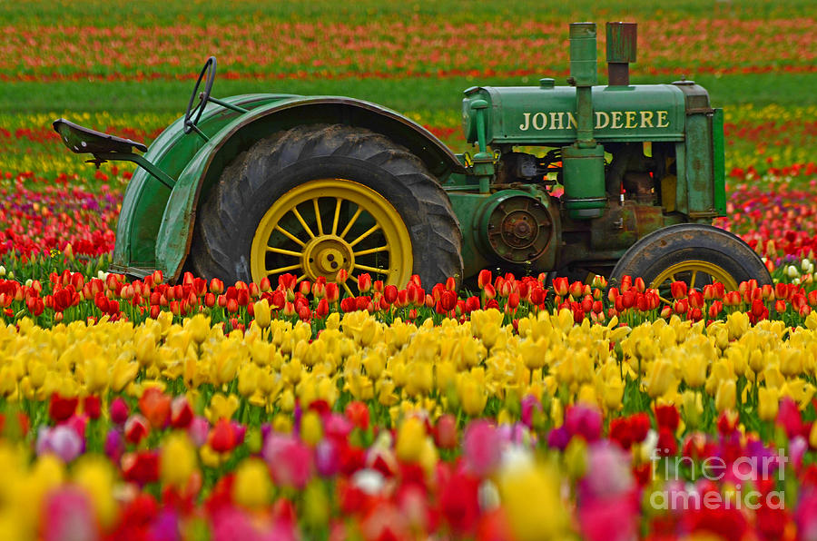 Pacific Photograph - Nothing Runs Like A Deere by Nick  Boren