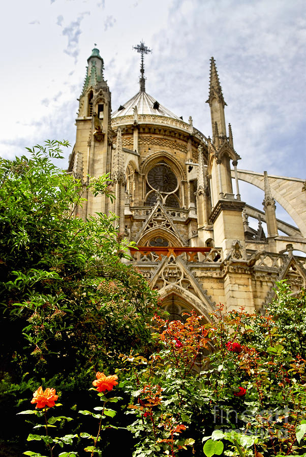 Notre Photograph - Notre Dame De Paris by Elena Elisseeva