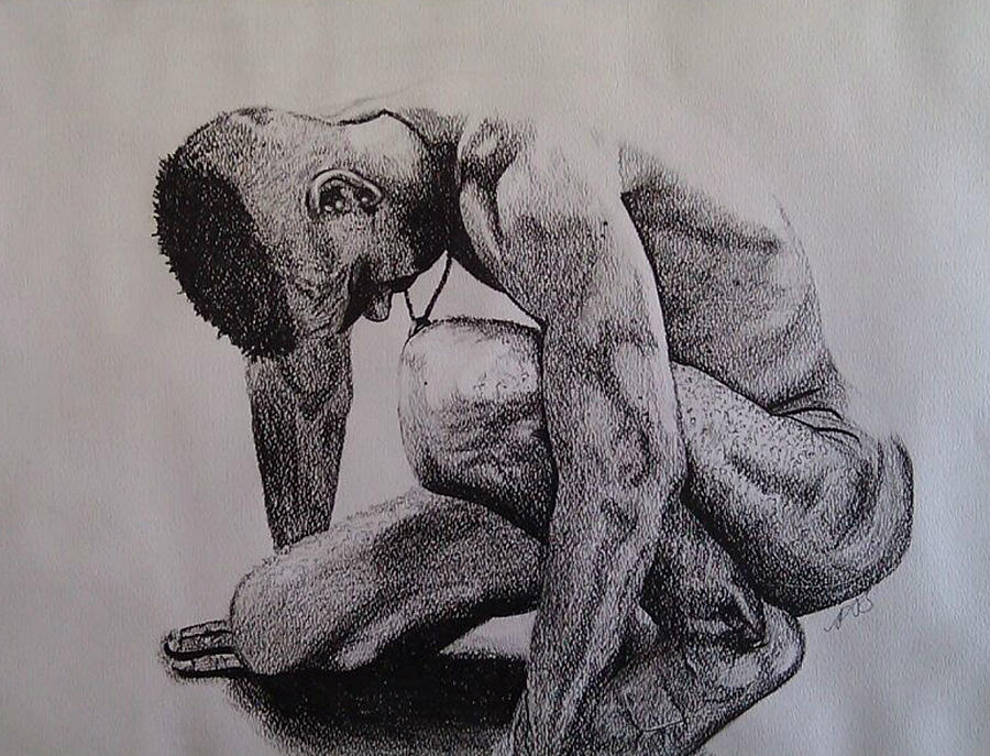Male Drawing - Nude II. by Paula Steffensen