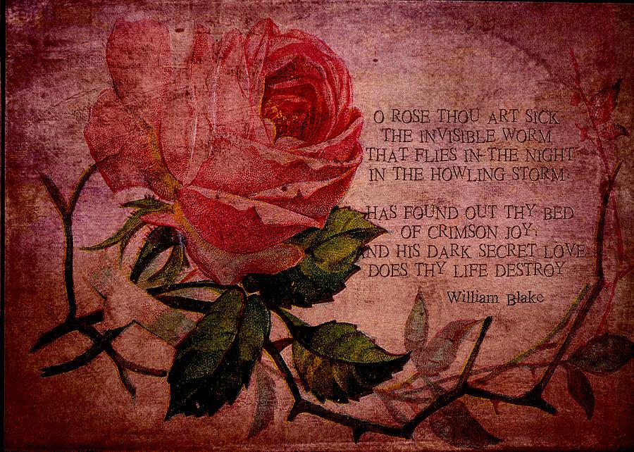 O Rose Thou Art Sick Digital Art - O Rose Thou Art Sick by Sarah Vernon