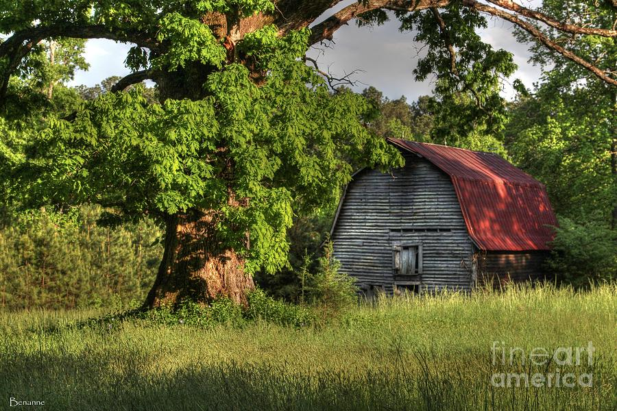 Oak Framed Barn Photograph
