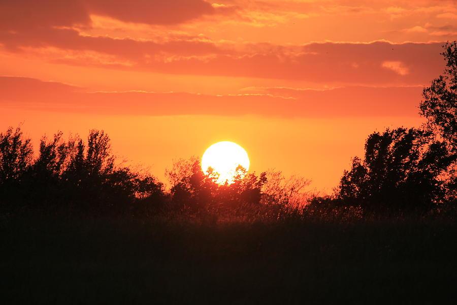 Landscape Photograph - October East Texas Sunset by Lorri Crossno