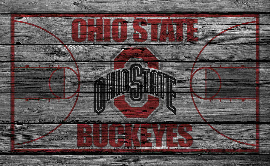 Ohio State Buckeyes Photograph