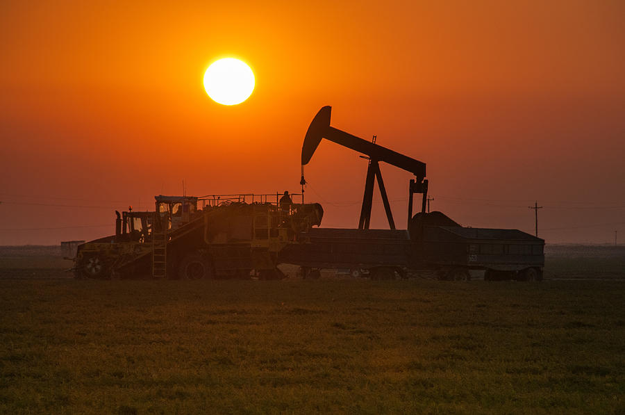 Mms stripper oil well royalty