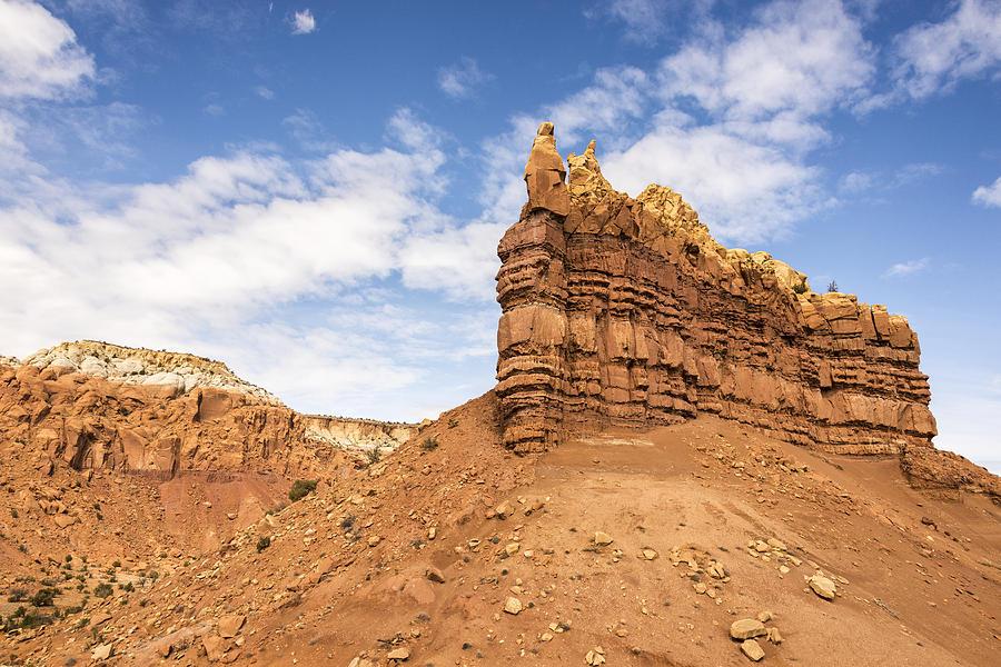 Ojitos De Los Gatos - New Mexico Photograph