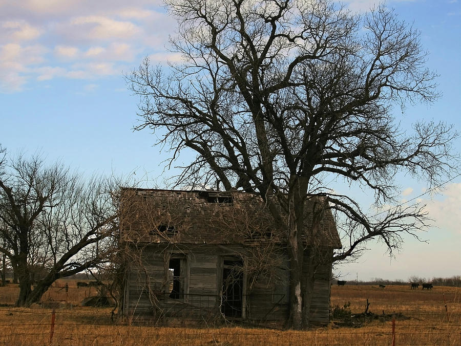Oklahoma Shack Photograph