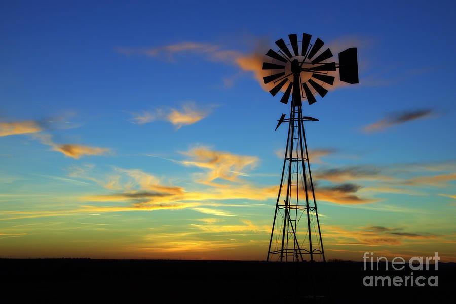 Nincompoopery: Oklahoma Sky