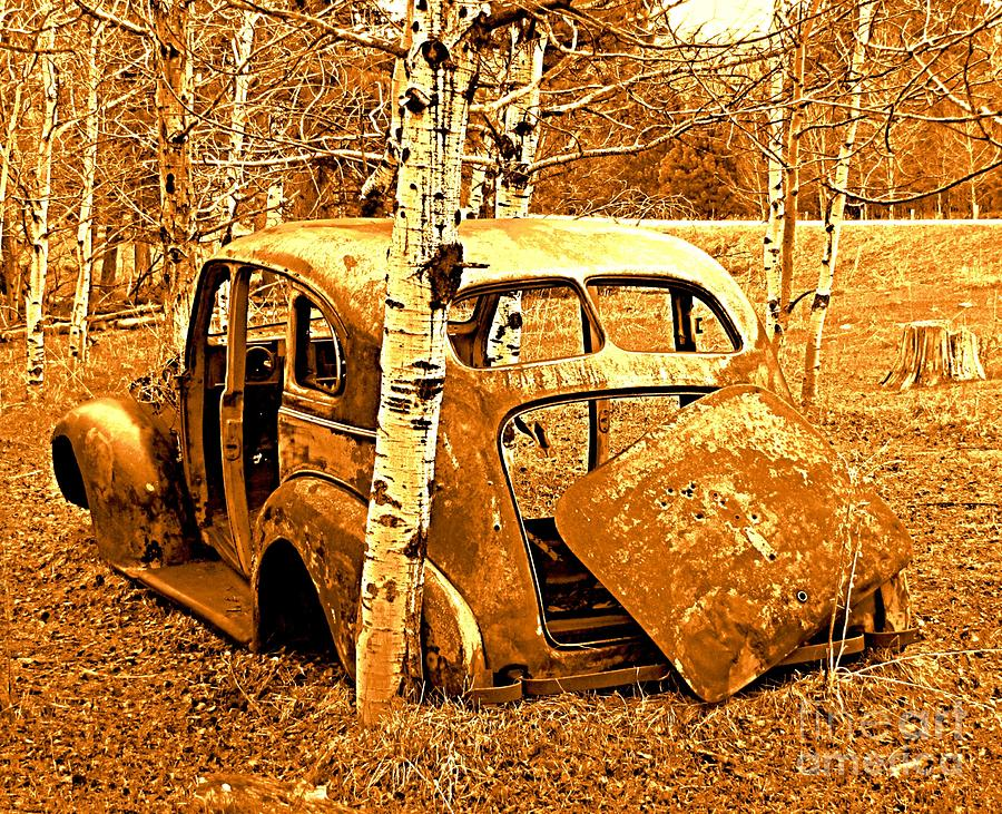 Ol Car Backside Photograph  - Ol Car Backside Fine Art Print