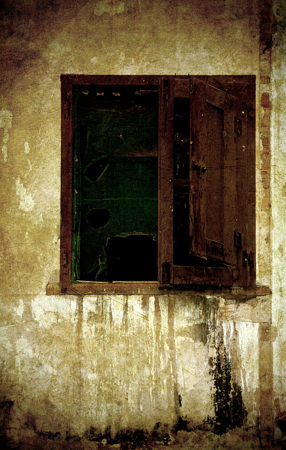 Old And Decrepit Window Photograph  - Old And Decrepit Window Fine Art Print