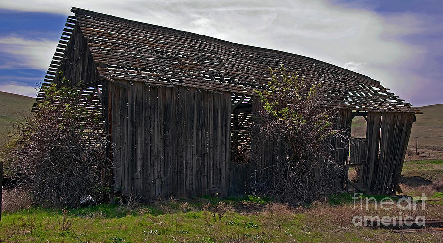 Old Barn In Country Landscape Photograph  - Old Barn In Country Landscape Fine Art Print