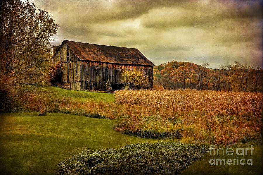 Old Barn In October Photograph  - Old Barn In October Fine Art Print