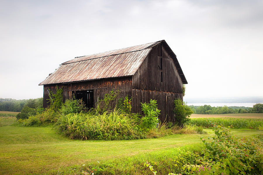 Old Barn On Seneca Lake - Finger Lakes - New York State Photograph