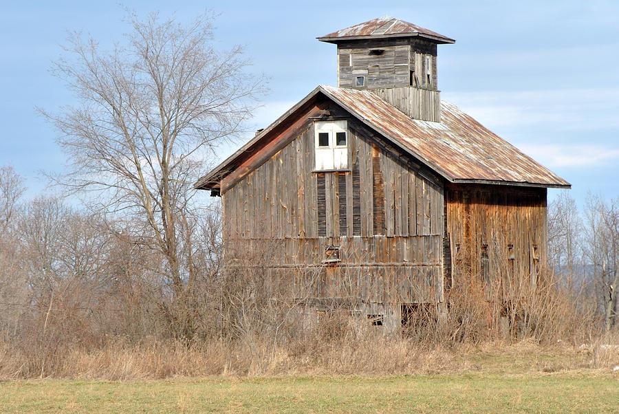 Old Barn With Cupola Photograph By Wayne Sheeler