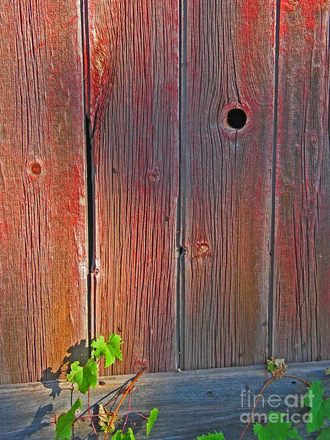 Old Barn Wood Photograph By Ann Horn