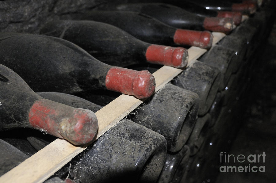 Old Bottles In A Wine Cellar.france Photograph  - Old Bottles In A Wine Cellar.france Fine Art Print