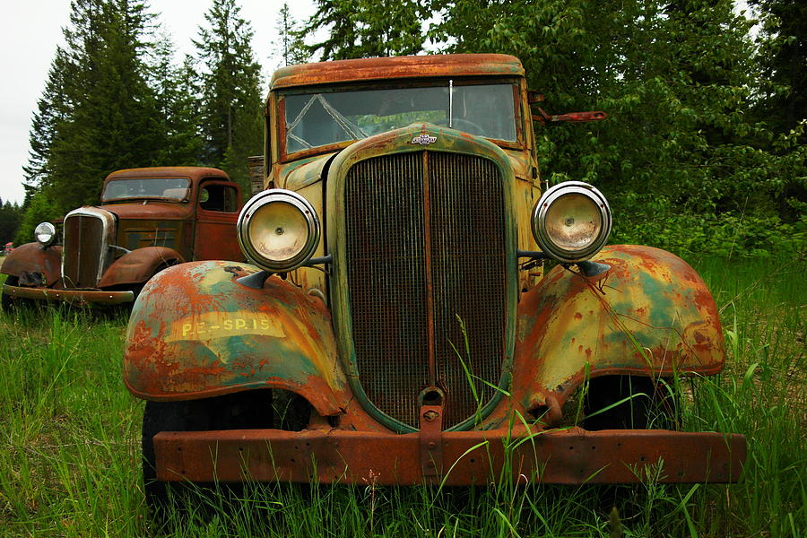 Old Cars Left To Decorate The Weeds Photograph  - Old Cars Left To Decorate The Weeds Fine Art Print
