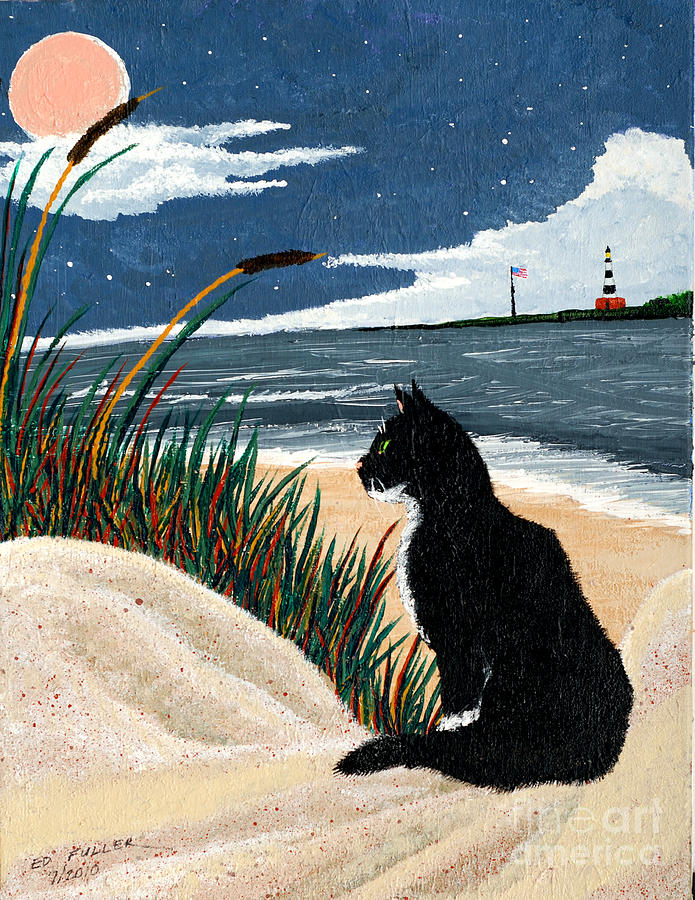 Old Cat And The Sea Painting