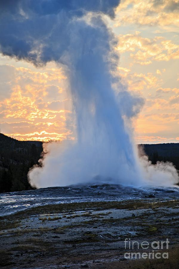 Old Faithful At Sunrise Photograph  - Old Faithful At Sunrise Fine Art Print