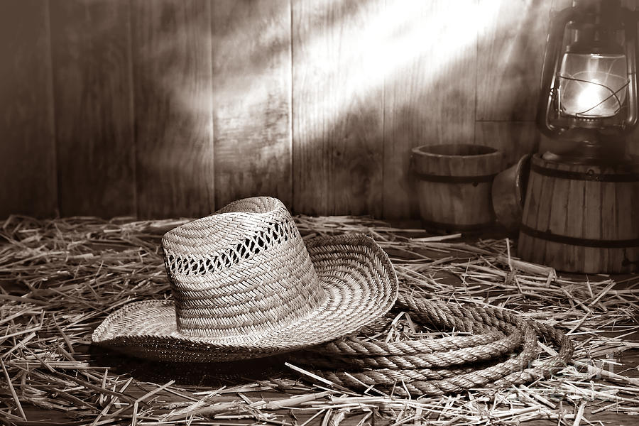 Old Farmer Hat And Rope Photograph