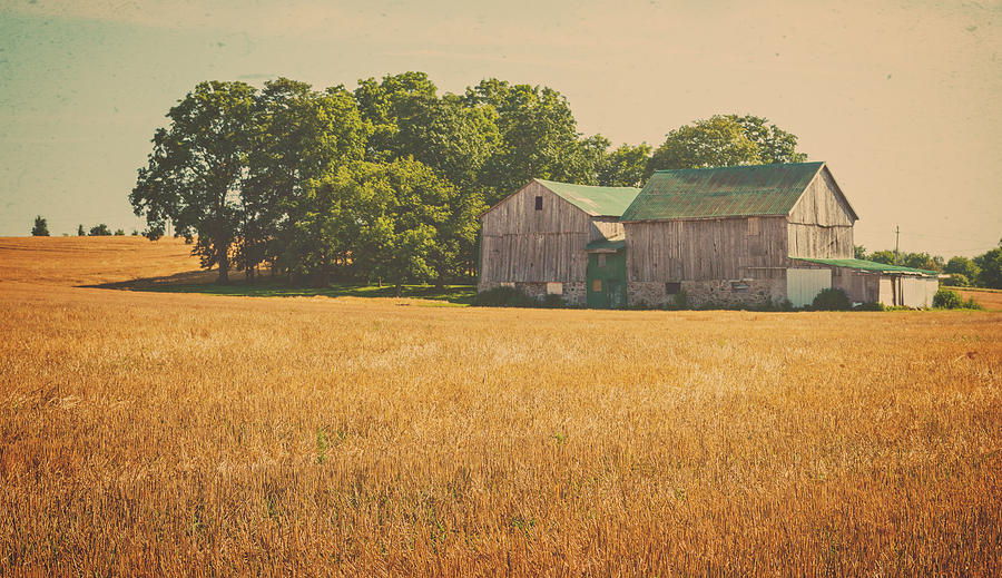 Old Farm Scene is a photograph by Garvin Hunter which was uploaded on ...
