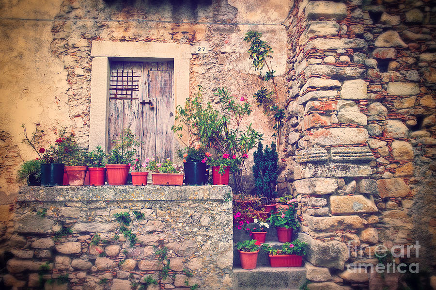 Old Italian Door With Flower Vases Photograph  - Old Italian Door With Flower Vases Fine Art Print