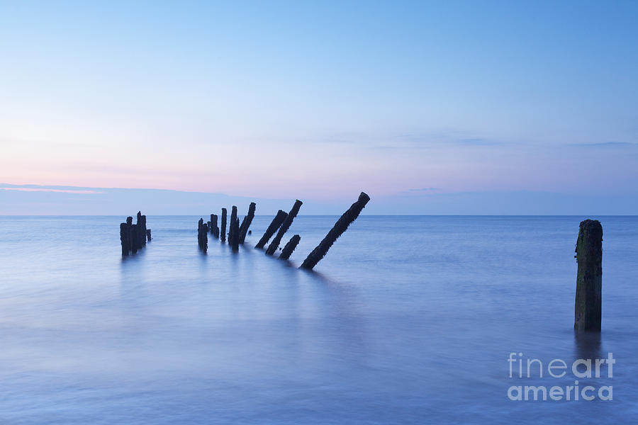 Old Jetty Posts At Sunrise Photograph