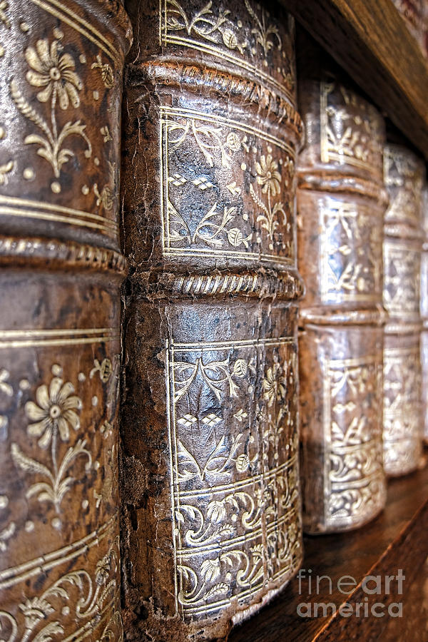 Bookcase Photograph - Old Knowledge by Olivier Le Queinec
