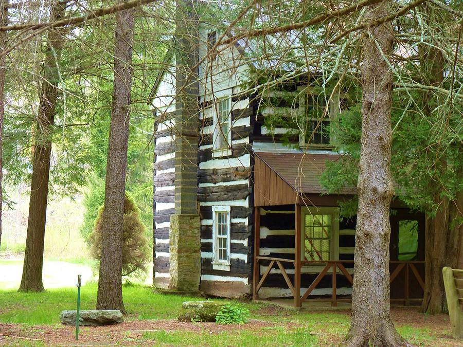 Old Log Cabin In The Woods Photograph