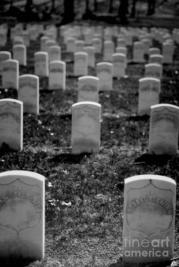 Old Military Graves Photograph
