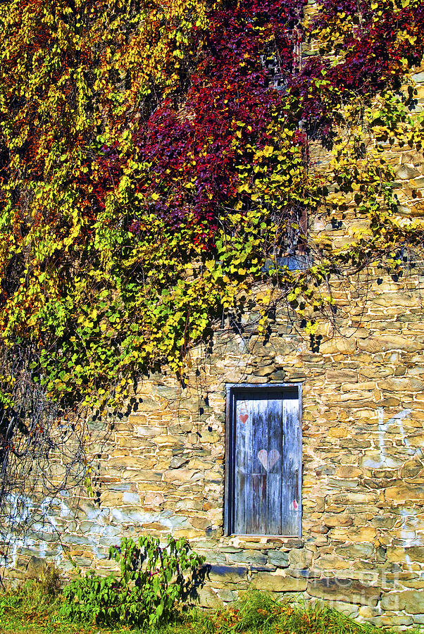 Old Mill Door Photograph  - Old Mill Door Fine Art Print