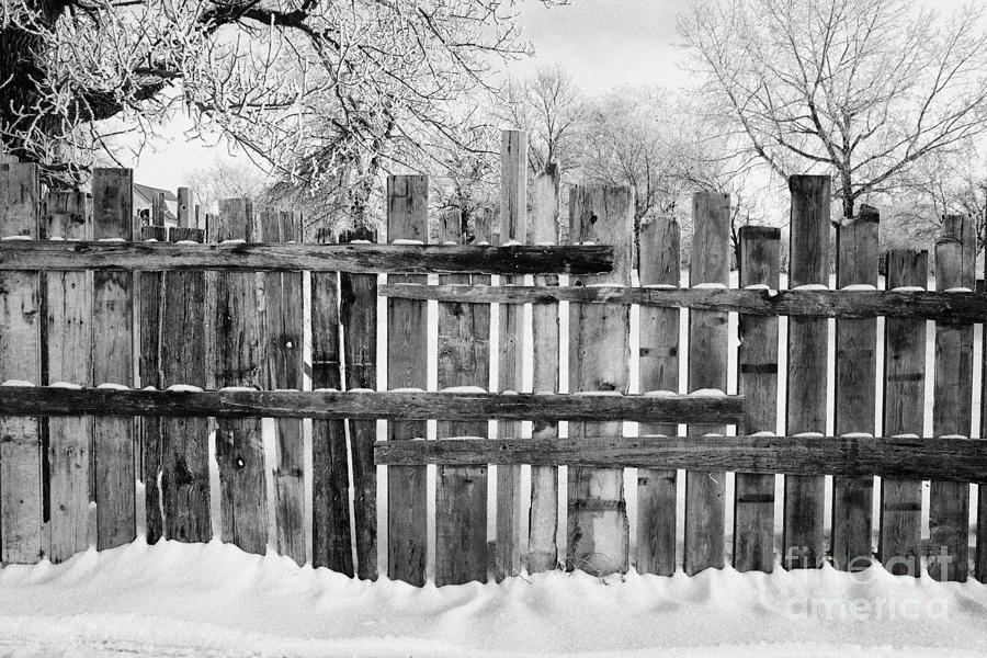 old patched up wooden fence using old bits of wood in snow Forget Saskatchewan Canada Photograph