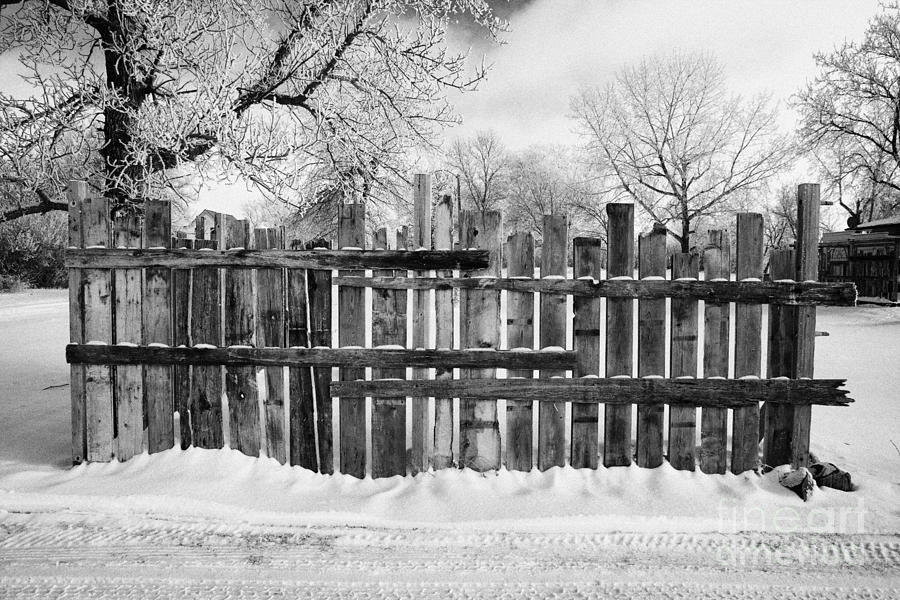 old patched up wooden fence using old bits of wood in snow Forget Saskatchewan  Photograph