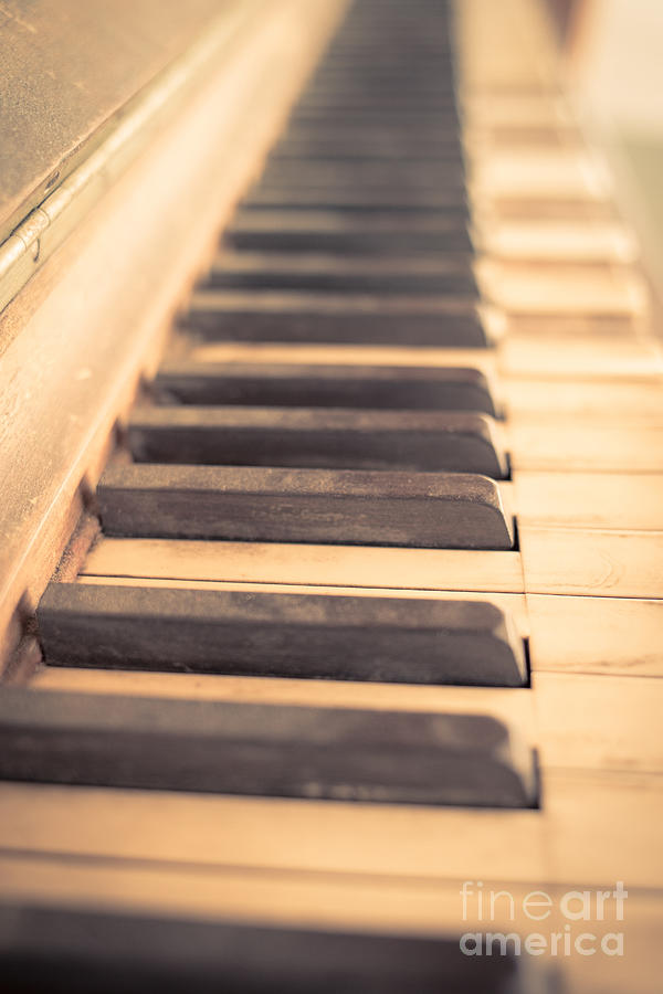 Old Piano Keys Photograph