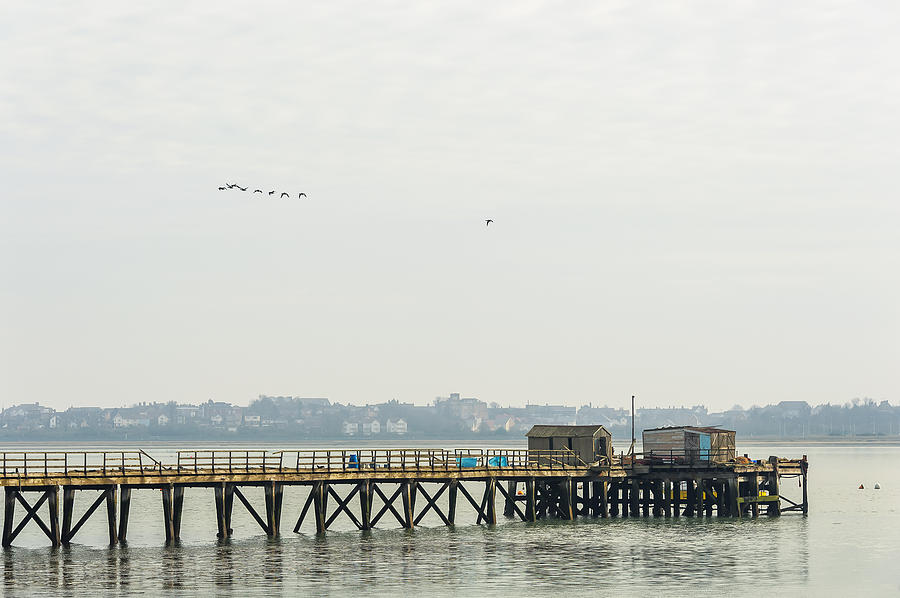 Old Pier Photograph