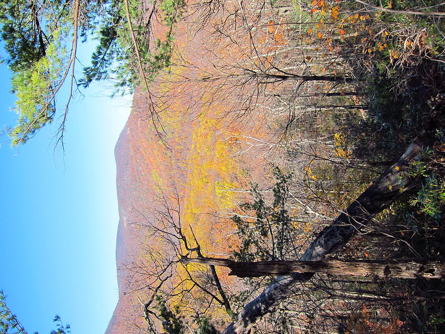 Old Photograph - Old Rag Hiking Trail - 121215 by DC Photographer
