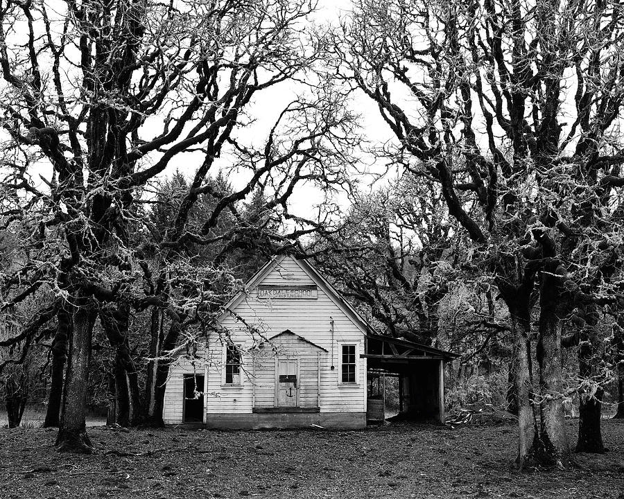 Old School House In The Woods Photograph