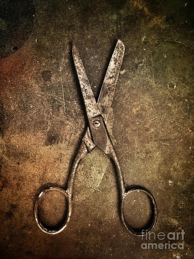 Old Scissors Photograph