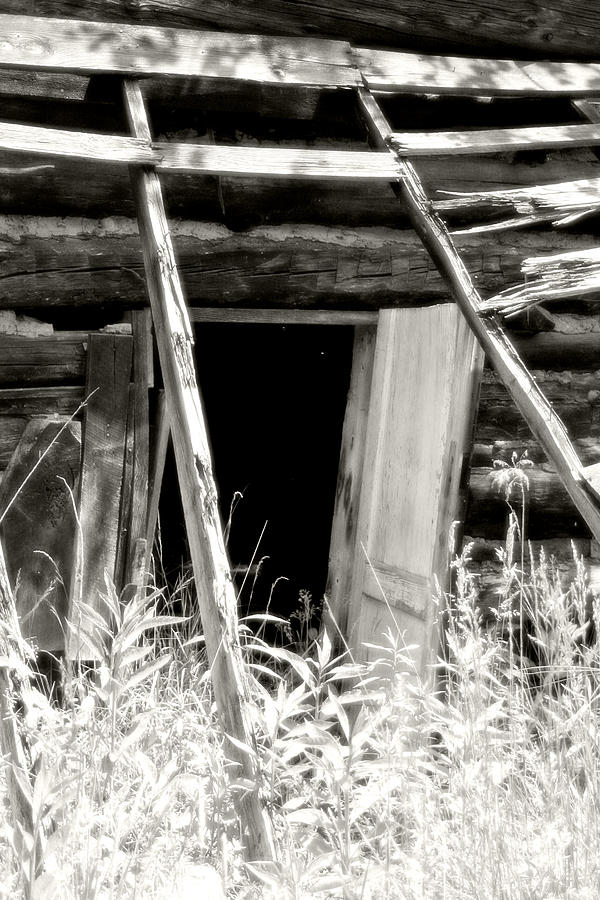 Old Tobacco Barn Photograph  - Old Tobacco Barn Fine Art Print
