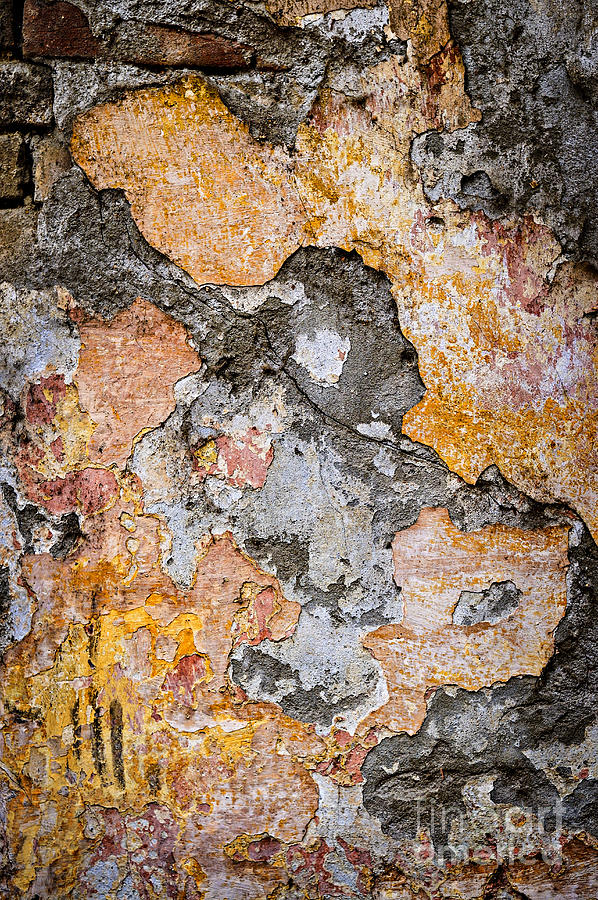 Wall Photograph - Old Wall Abstract by Elena Elisseeva