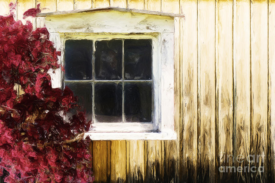Old White Window Painting  - Old White Window Fine Art Print